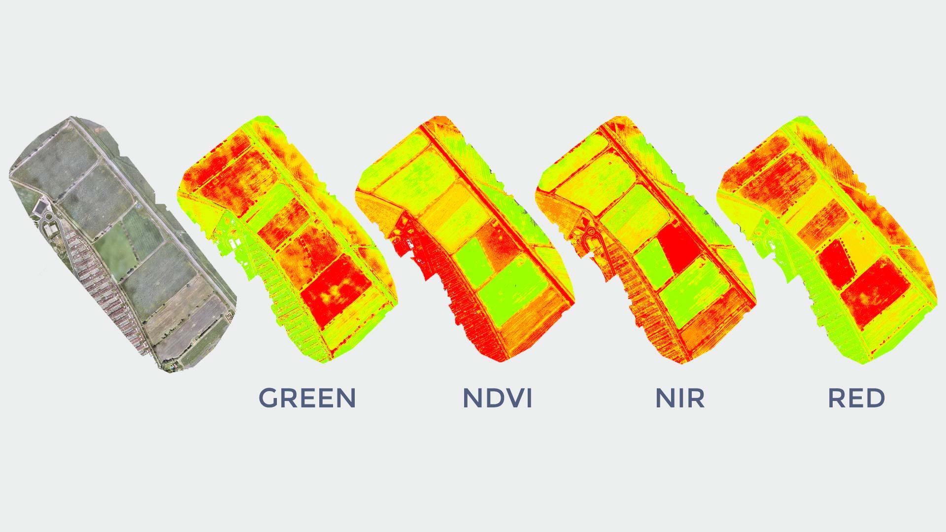 COYME - Mapeo multiespectral con drones